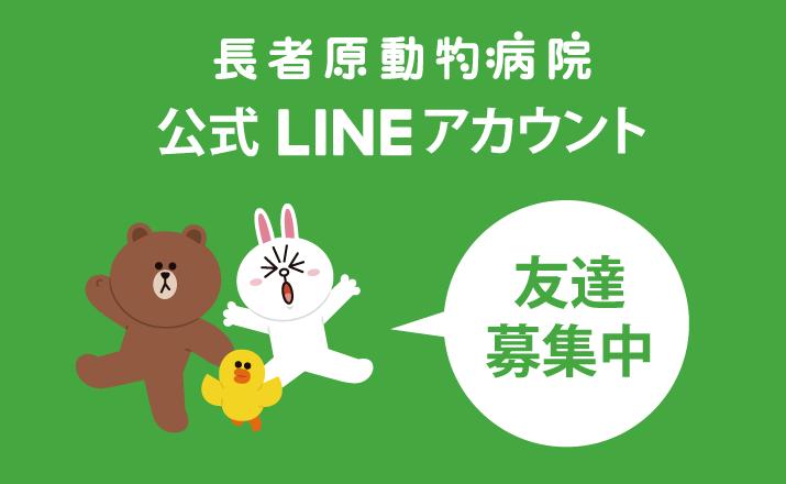 LINE@お友だち追加で素敵な特典がもらえる!