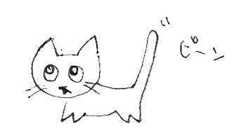cat_no1