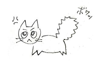 cat_no2