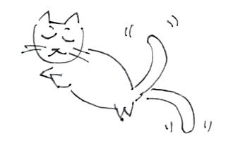 cat_no3