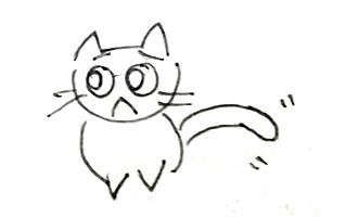 cat_no4