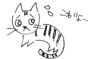 cat_no5