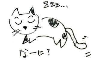 cat_no6