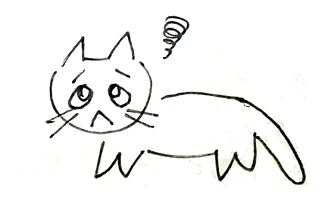 cat_no8